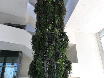 albero climb 18mt (C)